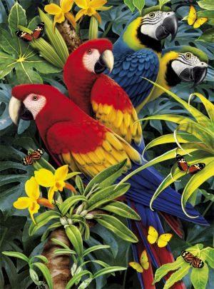 Clementoni Παζλ 1000 3D-Magestic Macaws (39188)