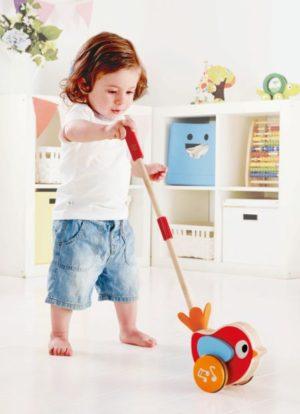 Hape Push & Pull Ξύλινο Πουλάκι Lilly Με Ήχους (E0353A)