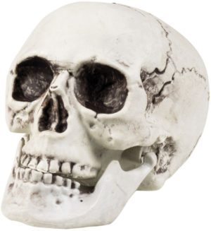 Clown Αξεσουάρ Skull Maxilla Movable Jaw 20x15cm (74362)